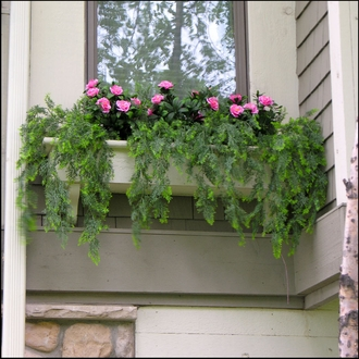 Outdoor Artificial Ivy & Other Hanging Vines