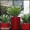 Outdoor Artificial Succulents and Cactus