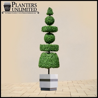 Outdoor Custom and Logo Shaped Topiaries