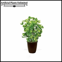 Peppermint Plant in Fiber Pot 24in.