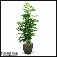 Phoenix Palm Tree in Square Metal Planter, 7'