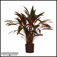Potted Baby Aspidistra 3' (2 Colors)
