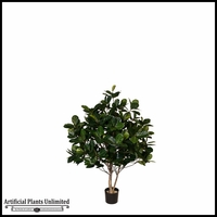 Potted Banyan Tree (2 Sizes)