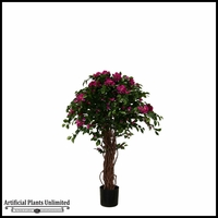 4' or 5' Potted Bougainvillea Tree (2 Colors)
