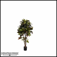 Potted Croton Tree (2 Sizes)