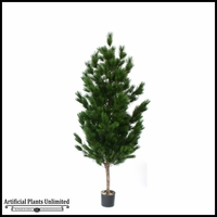 Potted Pinus Tree (2 Sizes)