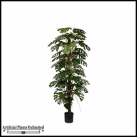 Potted Split Philo On Pole (2 Sizes)