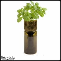 Recycled Bottle Seedling Kit - Growing Basil