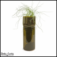 Recycled Bottle Seedling Kit - Growing Chives