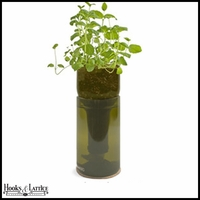 Recycled Bottle Seedling Kit - Growing Mint