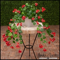 Red Fire Retardant Bougainvillea Bush
