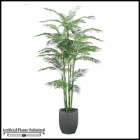 Reed Palm in Metal Hexagon Planter, 8'