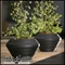 Residential Planters & Pots
