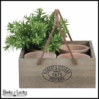 Set of 4 Rustic Pots in Square Wood Container