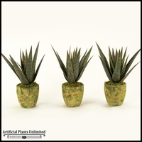 Set Of Three Agave Plant in Round Garden Vases, 16 in.