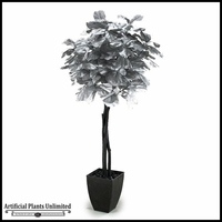 Silver Fiddle Leaf Fig Tree in Square Metal Planter, 7'