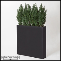 Slender Cedar Screen in Rectangle Planter, 6'