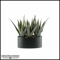 Striped Agave in Oblong Metal Planter, 16 in.