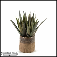 Striped Agave Plant in Round Ceramic Planter, 18 in.