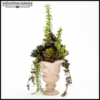 Succulent Mix in Traditional English Urn 7.5inDx25inH