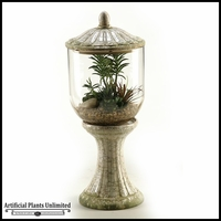 Succulents Aloe and Echeveria in Glass and Ceramic Terrarium with Lid, 23 in.