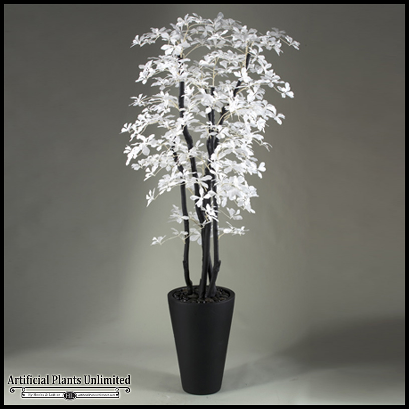 White Black Olive Tree In Resin Planter 7