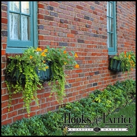 Window Box Buying Guide