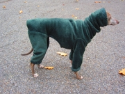 Italian Greyhound Windblock Fleece Cypress Hooded Bodysuit