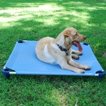 Dog Bed / Placeboard Medium