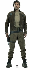 Captain Cassian Andor Rogue One: A Star Wars Story Cardboard Cutout Life Size Standup