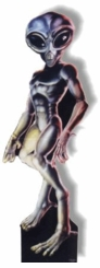 Male Roswell Aien Cardboard Cutout Life Size Standup