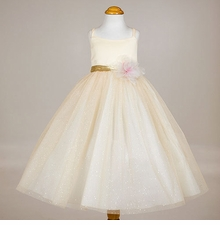 Beautiful Yellow Tulle Dress with Gold  SIZE 2