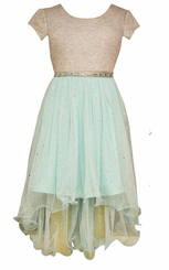 Bonnie Jean Big Girls Gray and Aqua Tulle Party Dress - sold out