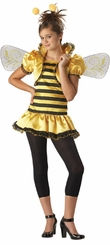 Deluxe Girls Bee Costume - NEW!