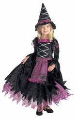 Fairytale Witch Costume