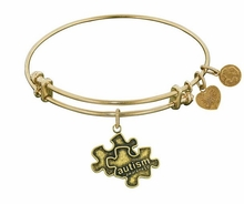 Generation Rescue Autism Support Bangle Bracelet Antique Gold
