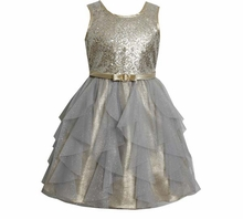 Girl's Party Dress: Silver and Gold Lame Chiffon Flutter Dress size 6