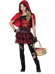 Red in the Hood : Girls Red Riding Hood Inspired Costume