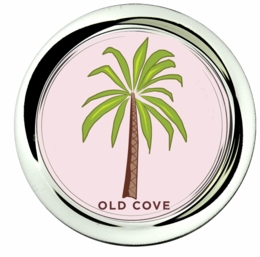 coaster;palm beach icon