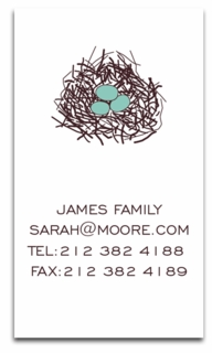robins egg blue; calling cards