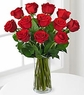 1 Dozen Long Stem Red Rose Bouquet