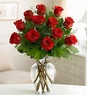 Premium Long Stem Red Roses Love ROMANCE