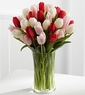 Spring Tulip Bouquet - 20 Stems Assorted
