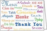 BL155D - Danke Donation Thank You Notes