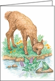 MH06 - Animal Note Cards
