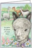 PM410 - Veterinary Condolence Cards