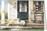 PU421 - Old Friends Pet Sympathy Cards