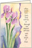S4243C - Prayers Surround You Sympathy Cards
