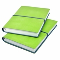Ciak Pitti Soft Leather Journal Lime