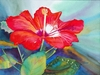 Aug 9 - Red Hibiscus with Lou Ann Overman